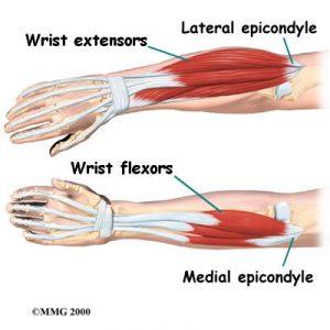 (zdroj: www.ergonomics-info.com)